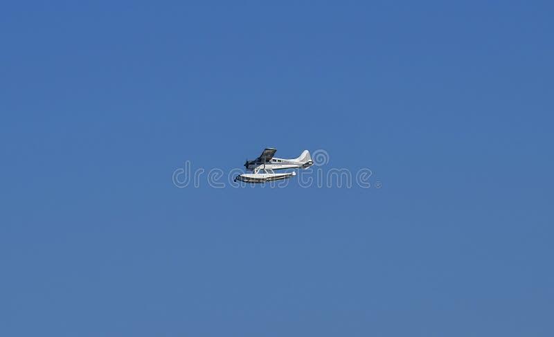 Australien, NSW, Sydney, Seeflugzeug-Transport lizenzfreie stockfotos
