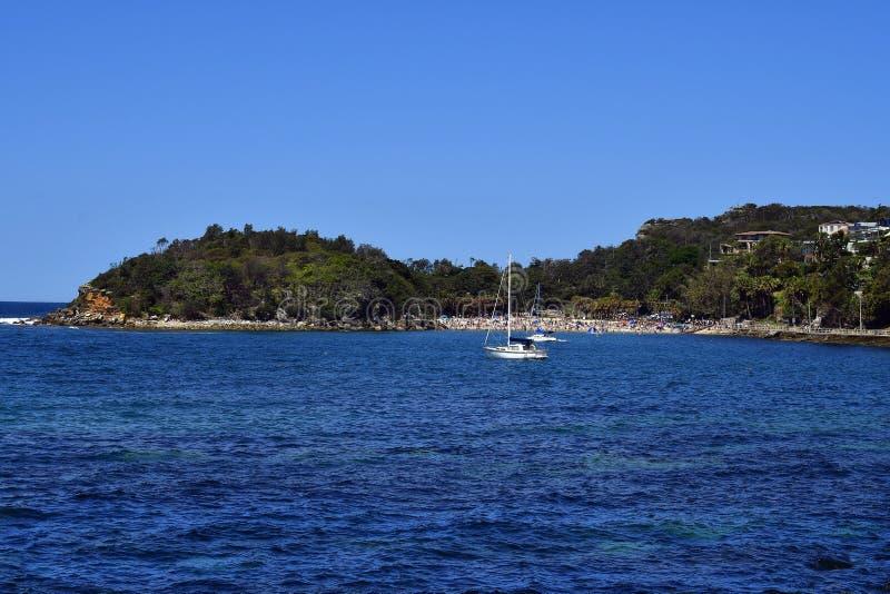 Australien NSW, Sydney, Shelly Beach i manligt arkivfoton