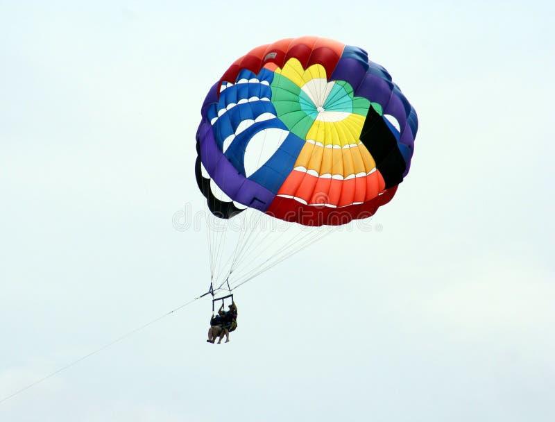 Australien paragliders royaltyfri fotografi