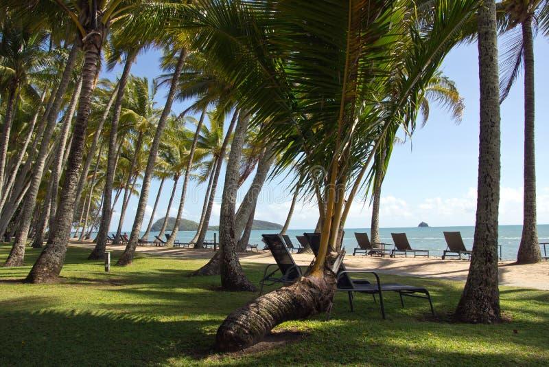 Australien Queensland, gömma i handflatan lilla viken, Palm Beach royaltyfria bilder