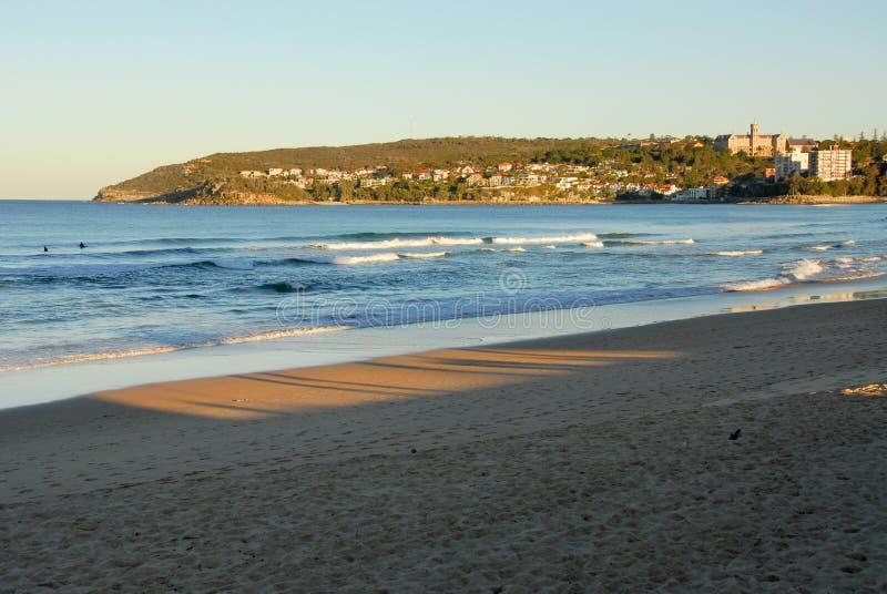 Australien strand manly sydney royaltyfri bild