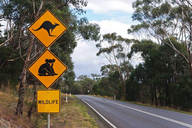 australiensisk landsroadsign arkivfoton