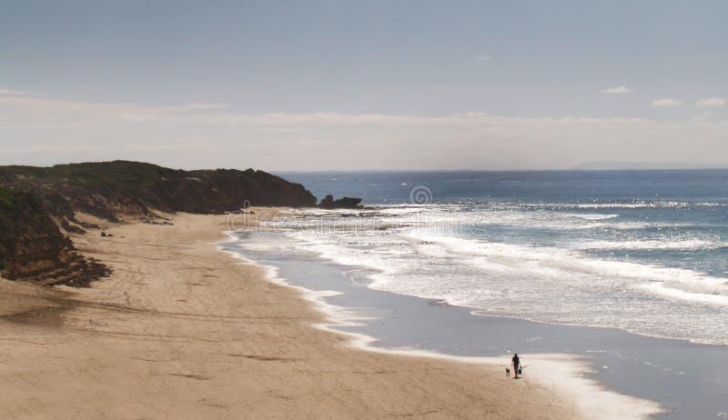 australiensisk strand arkivbilder