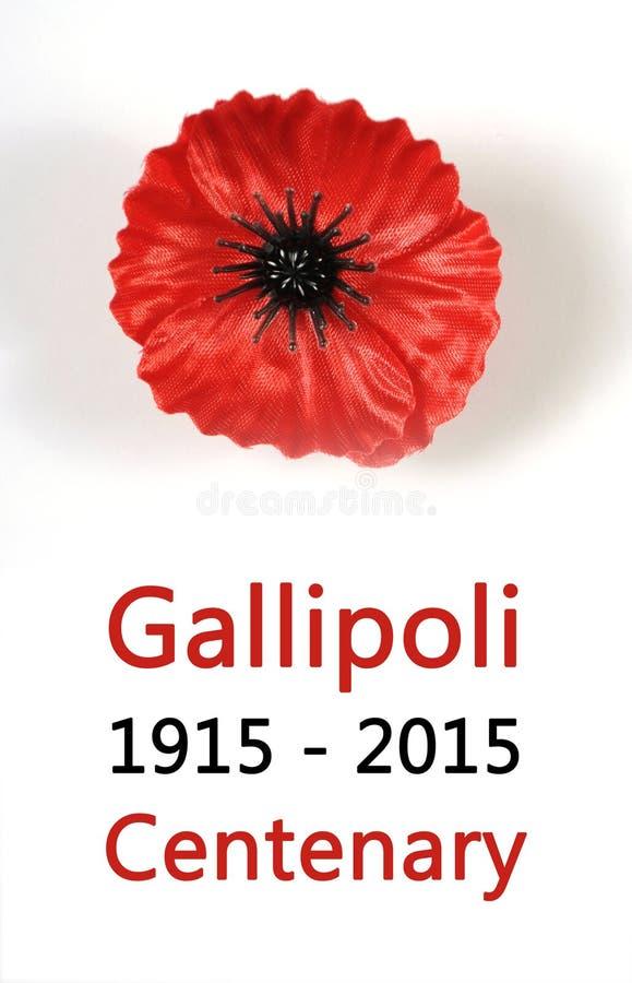 Australier Gallipoli-Jahrhundert, WWI im April 1915 Tribut mit rotem Mohnblumenrevers-Stiftausweis lizenzfreies stockfoto