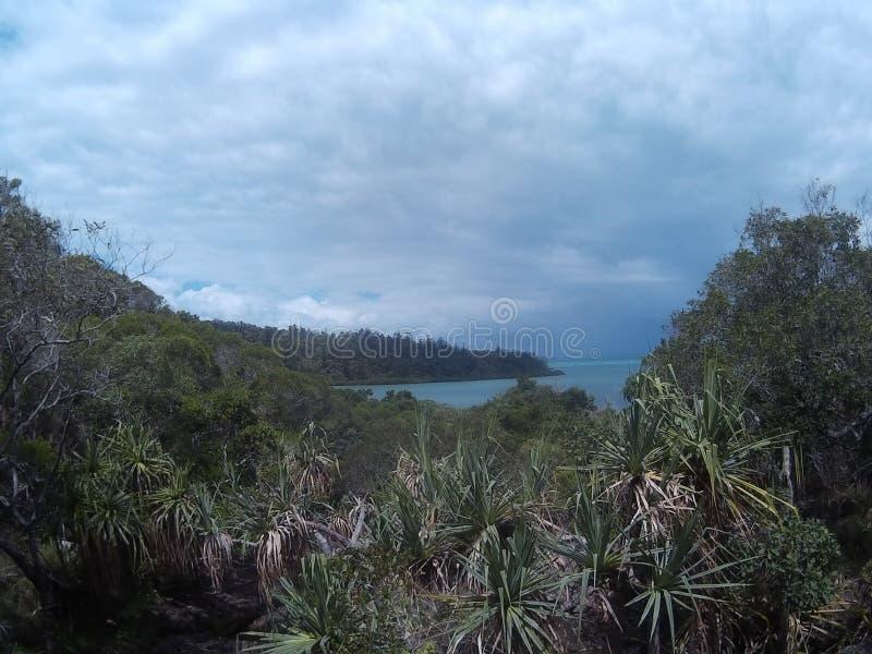 Australier seglar utmed kusten royaltyfria bilder
