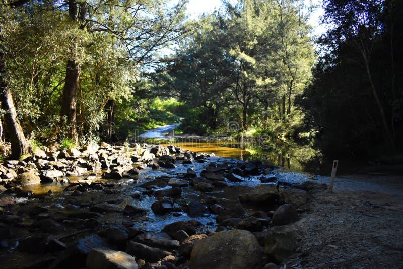 Australijska rzeka obrazy stock
