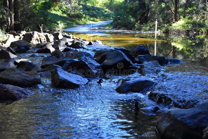 Australijska rzeka zdjęcia royalty free