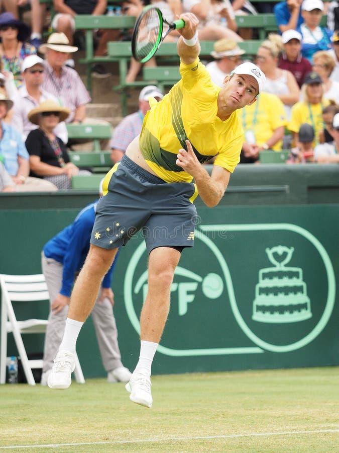 Australijski gracz w tenisa John ono Przygląda się podczas Davis filiżanki kopii vs USA zdjęcia royalty free