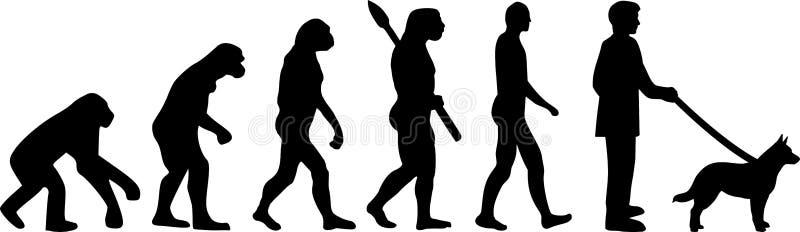 Australijskich byd?o ewolucji Psia sylwetka ilustracja wektor