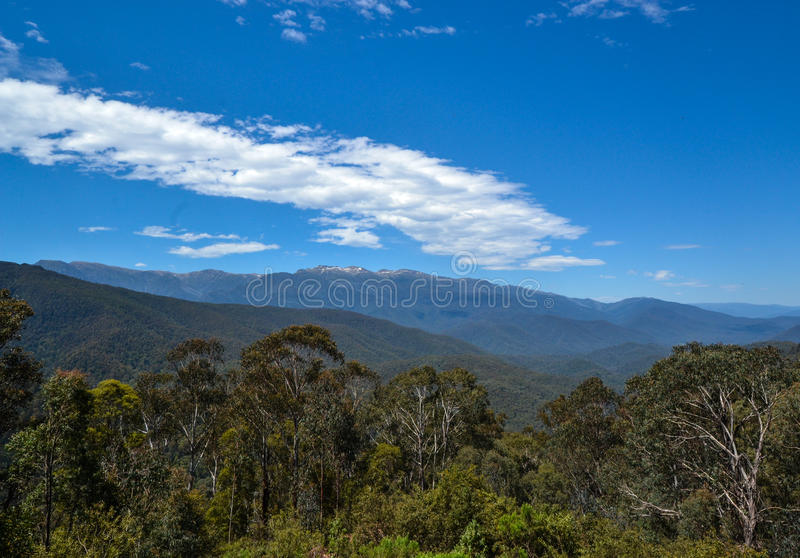Australisch Hoog Land 1, het Nationale Park van MT Kosciusko, Nieuw Zuid-Wales, Australië stock foto's