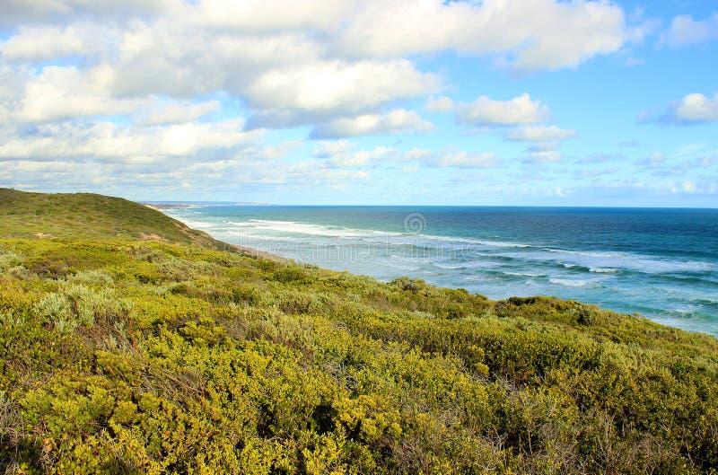 Australisch oceaanlandschap stock afbeelding