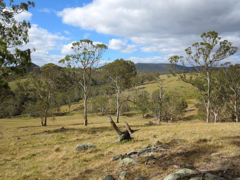 Australisch platteland royalty-vrije stock afbeeldingen