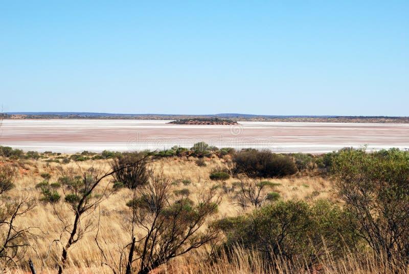 Australisch Salt Lake en spinifex gras stock afbeelding