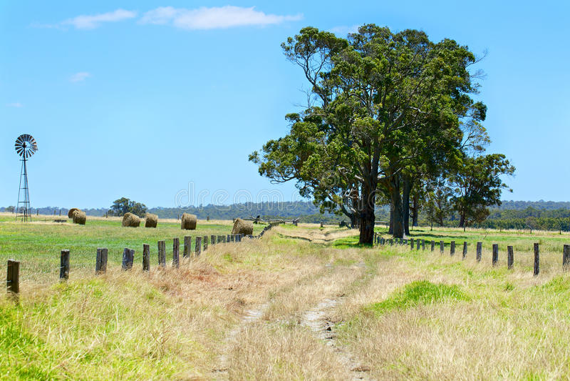 Australische ländliche Weidelandschaft mit Heuschobern lizenzfreies stockbild