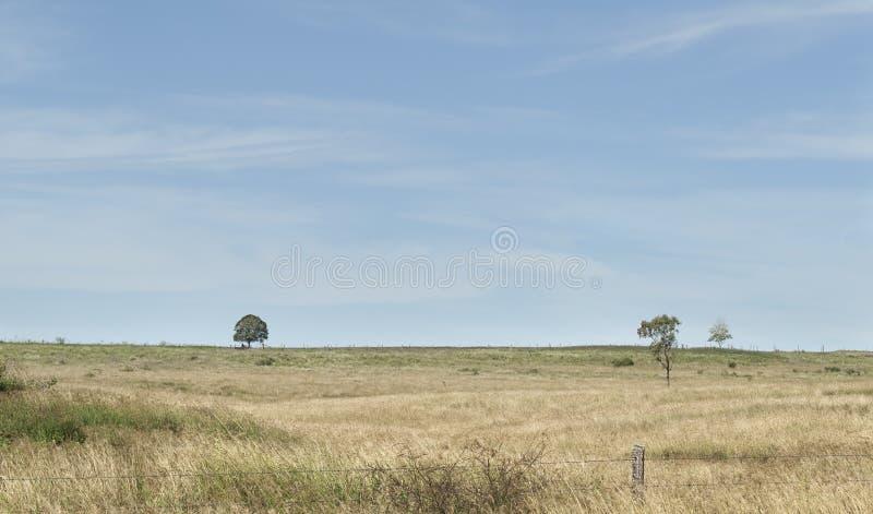 Australische landelijke landschapshorizon met hemel en wispy wolken royalty-vrije stock foto's