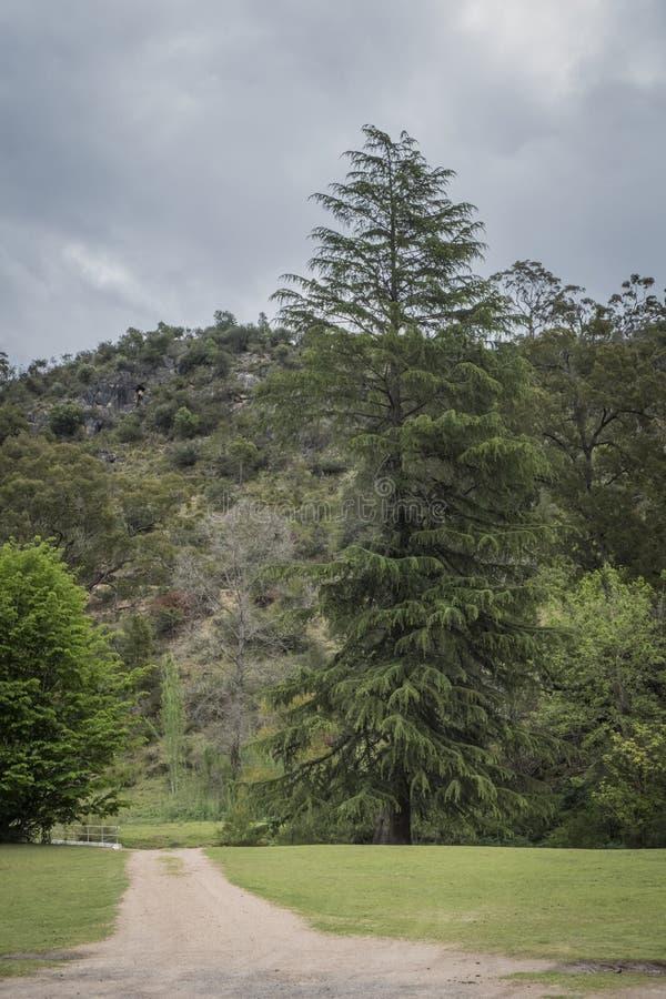 Australische open weg die naar een bergketen leiden royalty-vrije stock afbeelding