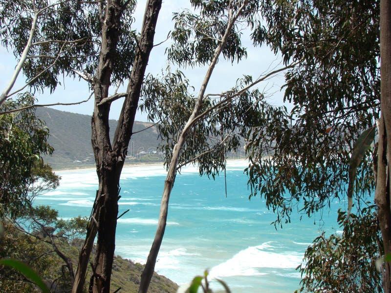 Australische Ozeanlandschaft stockfotografie