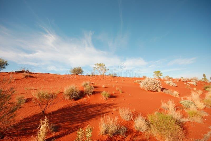 Australische Wüste stockbilder