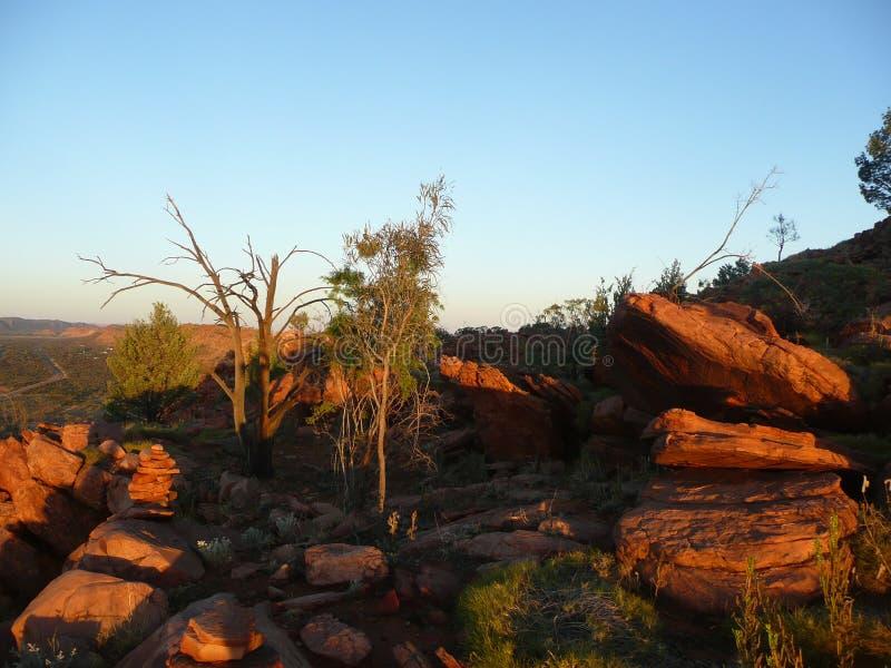 Australische woestijn stock afbeeldingen