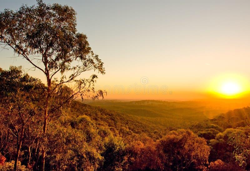 Australischer Sonnenuntergang stockfotos