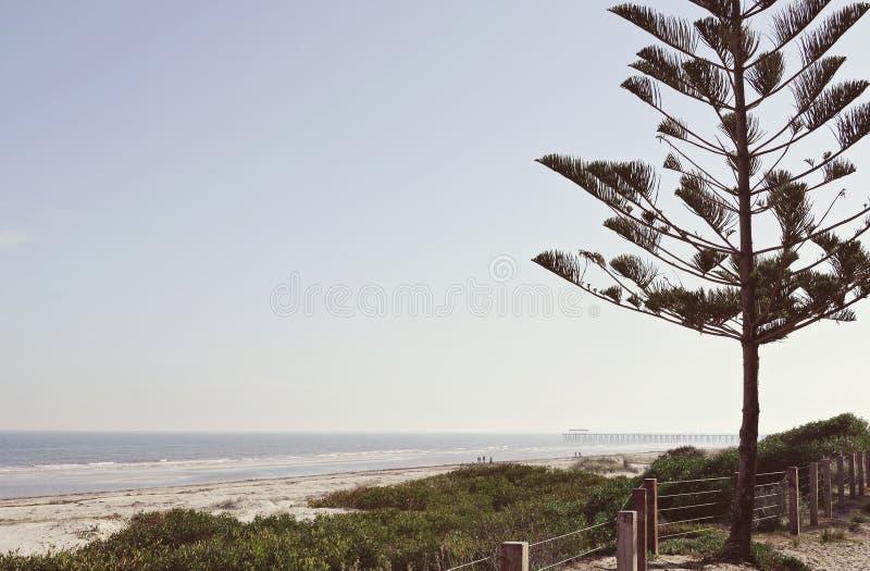 Australischer Strand und Ozeanlandschaft lizenzfreie stockfotografie