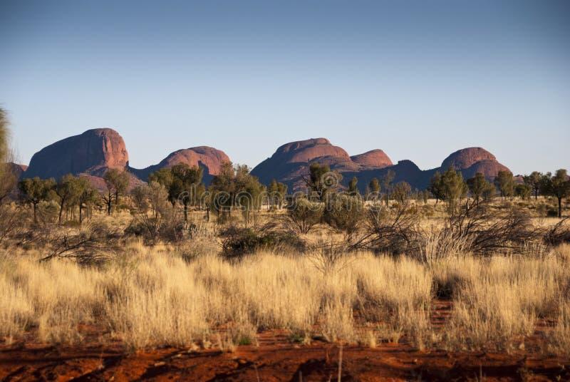 Australisches Hinterland lizenzfreie stockfotografie