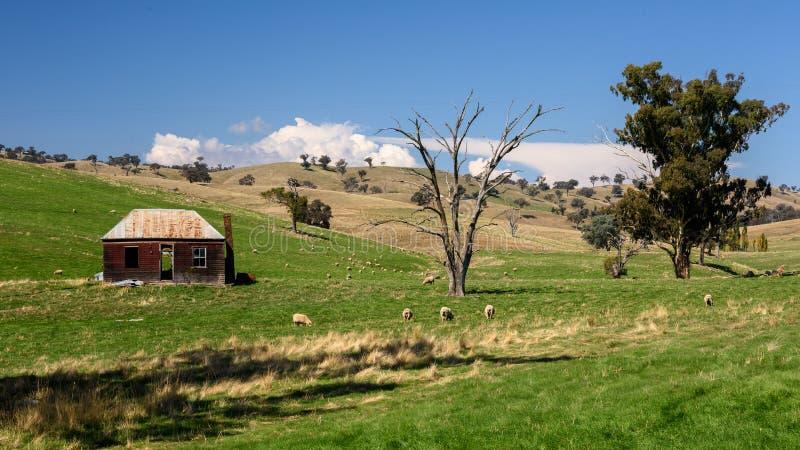 Australisches ländliches szenisches stockbilder