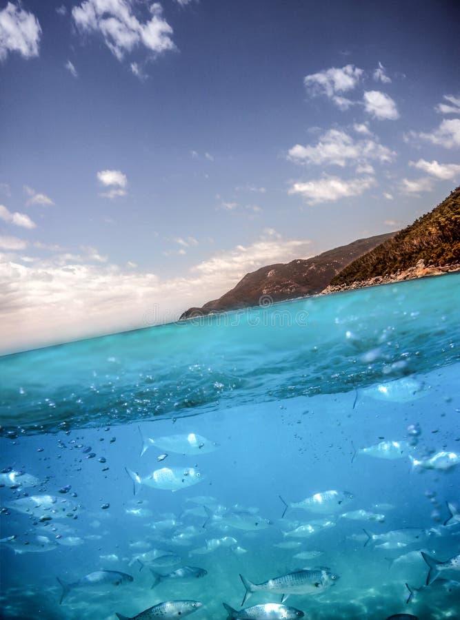 Australisk kust - ovanför och under royaltyfri foto