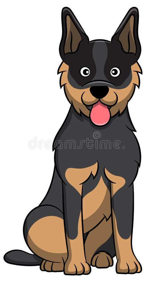 Australisk nötkreaturtecknad filmhund royaltyfri illustrationer