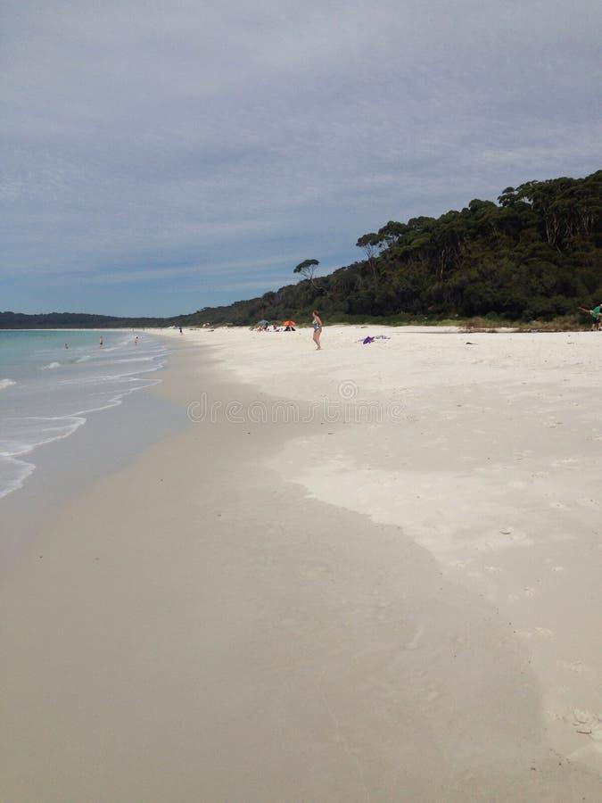 Australisk strandkust royaltyfri bild