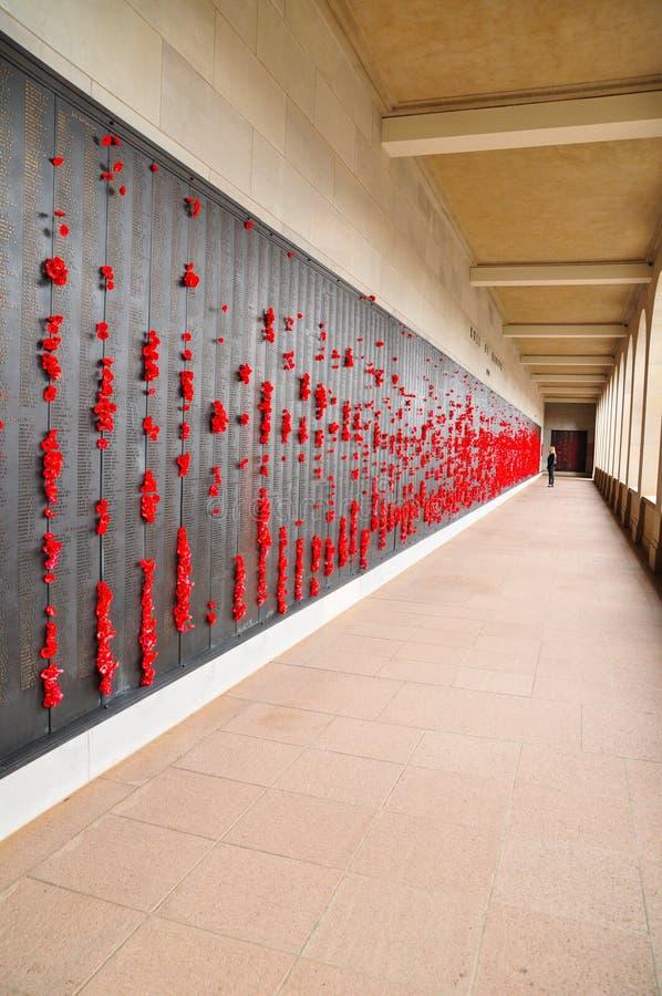 Australiska krigminnesmärke, vallmo och listor av namn på den minnes- väggen för australiska soldater som dog i det andra världsk arkivfoton