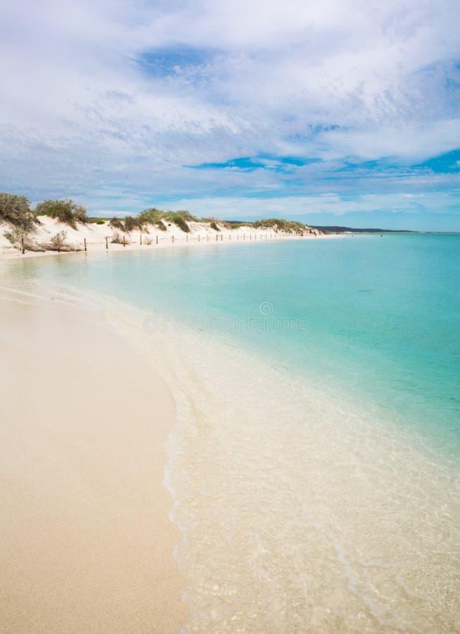 Australiskt lycksaligt för kust för sommarstrandhav härligt royaltyfri bild