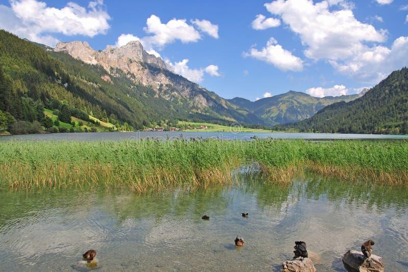austria haldensee jeziorny tal tannheimer Tirol zdjęcia royalty free