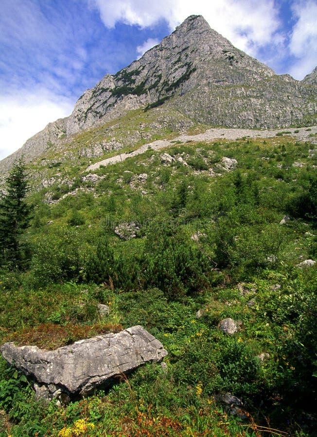 Austria/montaña Fotografía de archivo