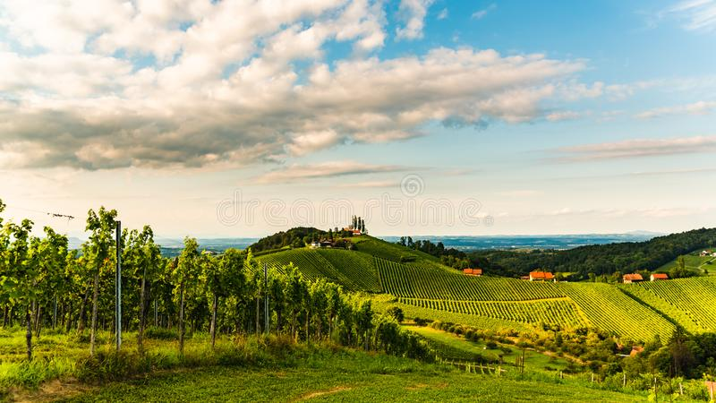 Austria, south styria vineyards travel destination. Tourist spot for vine. Lovers. Sunset landscape royalty free stock photography