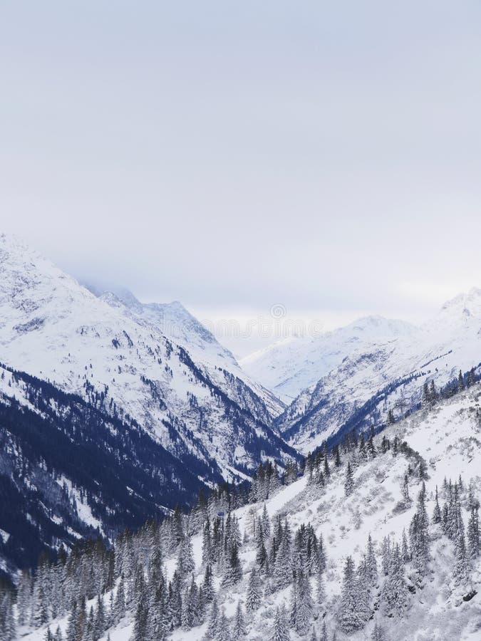 Austriacka Alps śniegu zima zdjęcie royalty free