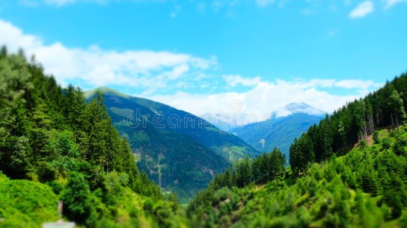 Austrian alpine green summer forest, Raggachlucht, Austria royalty free stock photos