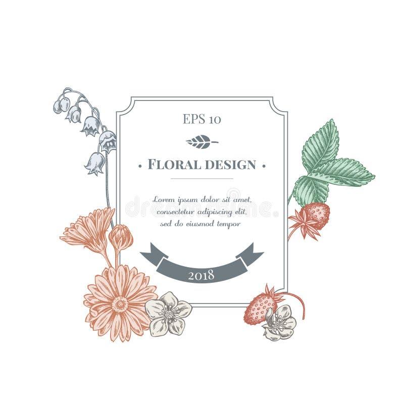 Ausweisentwurf mit Pastellcalendula, Maiglöckchen, Erdbeere lizenzfreie abbildung