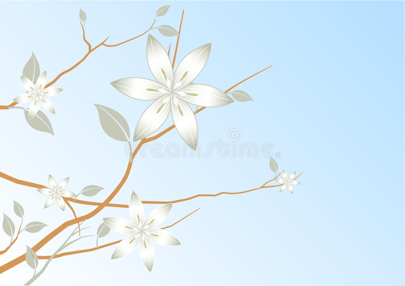 Auszugsblumenhintergrund des blauen Himmels