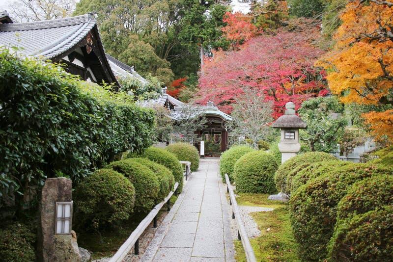 The Autam garden in Konkai Komyoji Temple. Fall in Konkai Komyoji Temple position Residents stock image