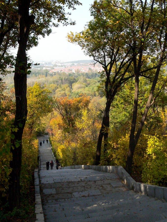 Autemn park in China royalty free stock photos