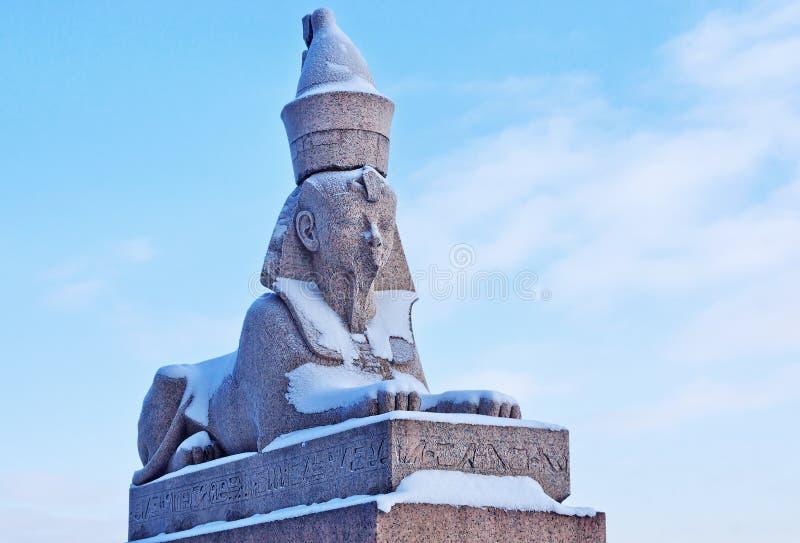 Autentisk antik egyptisk sphynx på kajen av den Neva floden arkivfoton