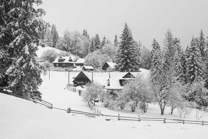 Autentisk carpathian by som täckas med snö royaltyfri fotografi