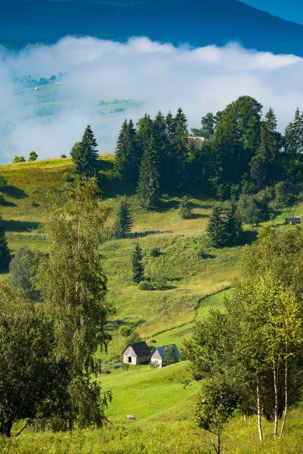 Autentiska carpathian hus på en grön äng royaltyfria bilder