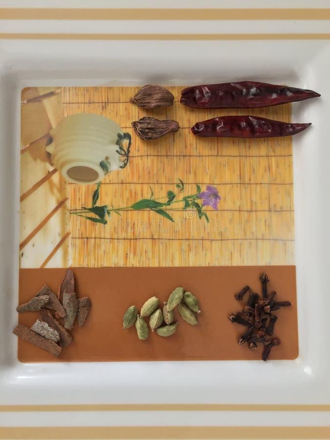 Autentiska kryddor gör stor kokkonst royaltyfri fotografi