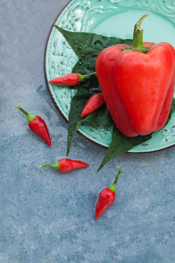 Autentyczna żywność organiczna Duzi i mali pieprz włoszczyzny delishes obrazy royalty free