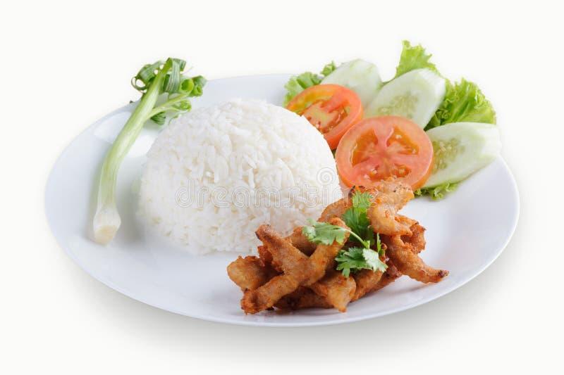 Autentyczna Tajlandzka smażąca wieprzowina z czosnkiem na ryż zdjęcia royalty free