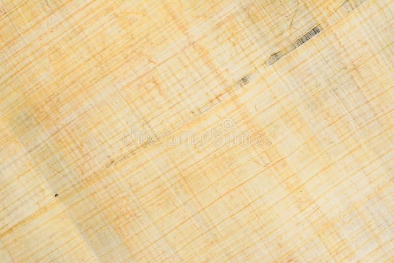 Autentycznego Egipskiego papirusu papieru diagonalny tło 41 i tekstura Makro- zbli?enie fotografia royalty free