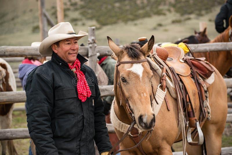 Western cowboy with saddled buckskin horse ready to go roundup horses. On the prairie royalty free stock image