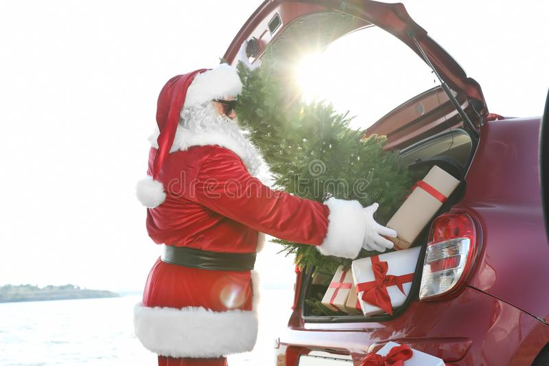 Authentic Santa Claus putting gift boxes and Christmas tree into car trunk. Outdoors royalty free stock photo